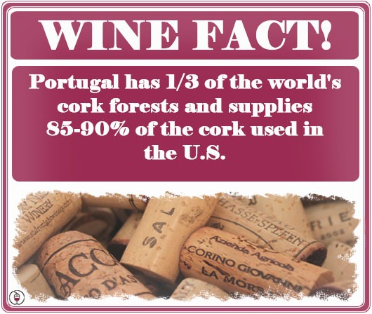 WINE FACT: Where do Corks Come From?