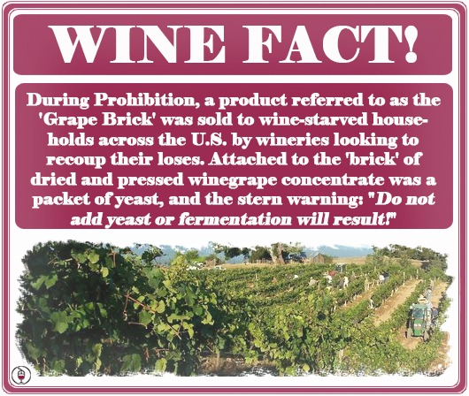 the-prohibition-wine-brick-fact